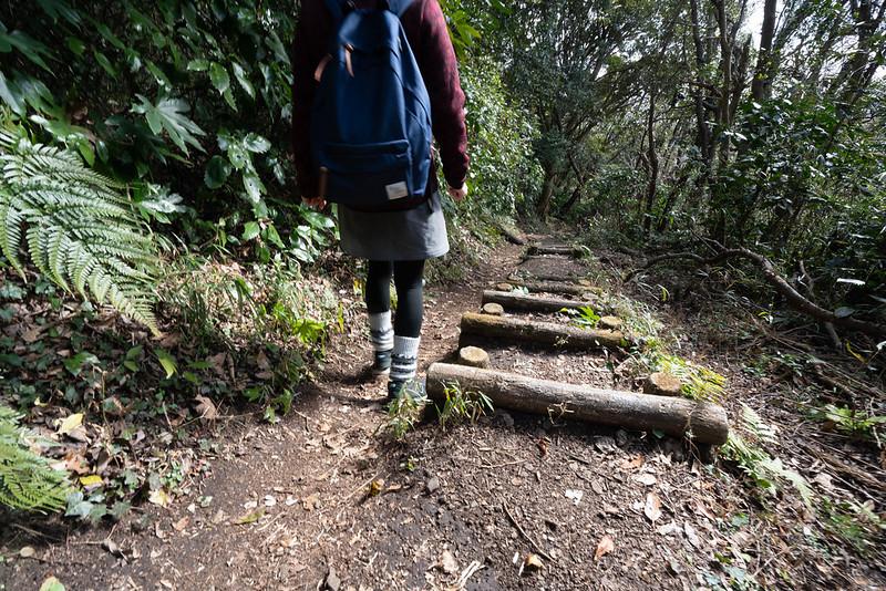 武山から下山