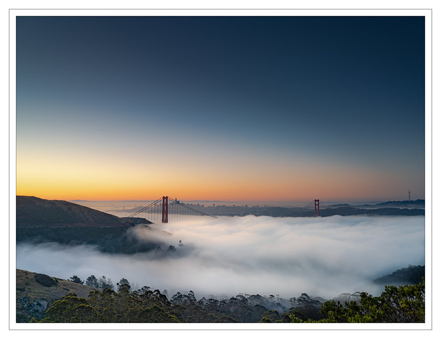 Swelling Fog Before Sunrise