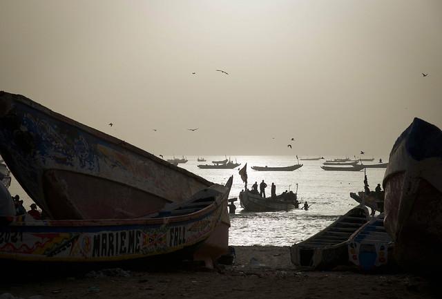 Fishing port - Nouakchott