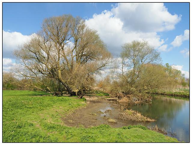 2021-0079 - River Nene near Islip, Northants.