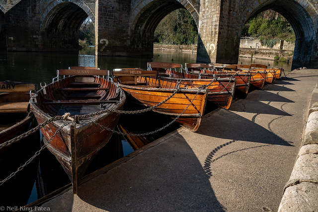 Rowing Boats - Photocredit Neil King -1