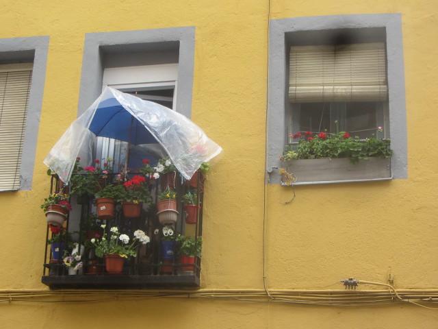 Balcony  and windowbox, Calle  Marcenado, Prosperidad,  my nrighbourhood, Madrid