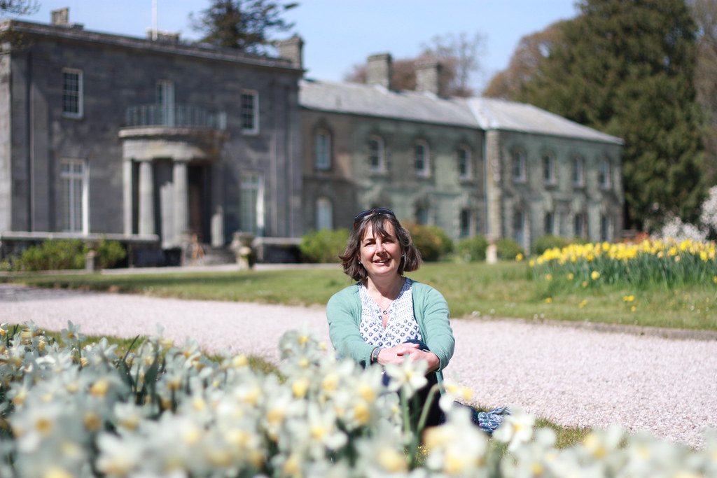 Among the daffodils, Arlington Court
