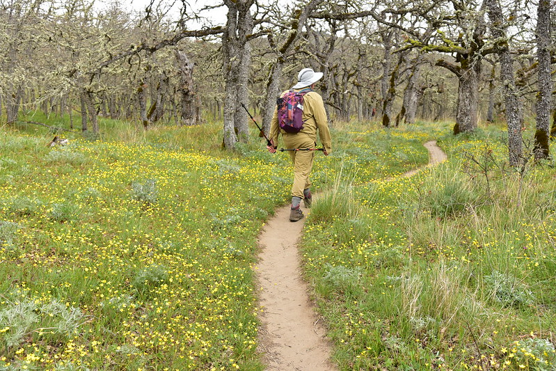 Lyle Cherry Orchard Hike