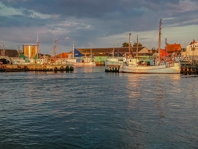 Kerteminde Fiskehavn on a summer's evening