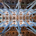 Ceiling of the Sagrada Familia in Barcelona.