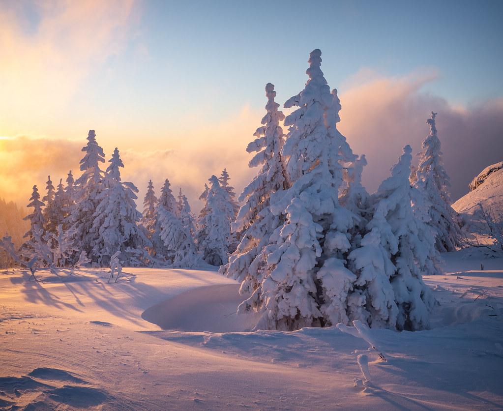 Wintertagesanbruch