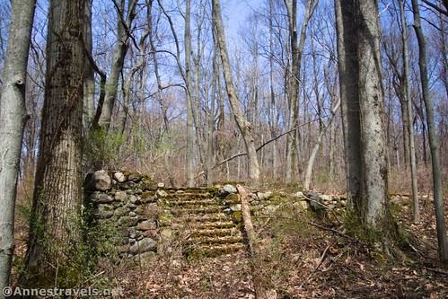 Old foundation in the woods, Fair Haven State Park, New York