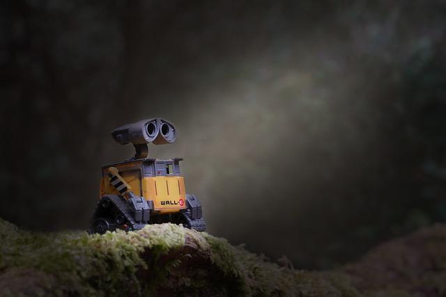 365 - Image 111 - Where's Wall-E...?