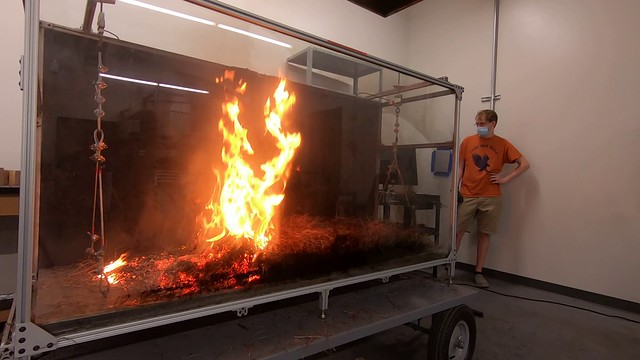 A simulated wildfire burns in a wildlife research apparatus with Daniel Stubbs watching.