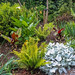 "<p><a href=""https://www.flickr.com/people/jimmy_pierce/"">JimmyPierce</a> posted a photo:</p>  <p><a href=""https://www.flickr.com/photos/jimmy_pierce/51129977872/"" title=""blarney castle and gardens - cork""><img src=""https://live.staticflickr.com/65535/51129977872_1891cd2592_m.jpg"" width=""240"" height=""126"" alt=""blarney castle and gardens - cork"" /></a></p>"
