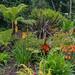 "<p><a href=""https://www.flickr.com/people/jimmy_pierce/"">JimmyPierce</a> posted a photo:</p>  <p><a href=""https://www.flickr.com/photos/jimmy_pierce/51129978317/"" title=""blarney castle and gardens - cork""><img src=""https://live.staticflickr.com/65535/51129978317_e2b28c6034_m.jpg"" width=""240"" height=""124"" alt=""blarney castle and gardens - cork"" /></a></p>"