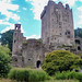 "<p><a href=""https://www.flickr.com/people/jimmy_pierce/"">JimmyPierce</a> posted a photo:</p>  <p><a href=""https://www.flickr.com/photos/jimmy_pierce/51129989624/"" title=""blarney castle and gardens - cork""><img src=""https://live.staticflickr.com/65535/51129989624_7447448ccd_m.jpg"" width=""240"" height=""214"" alt=""blarney castle and gardens - cork"" /></a></p>"