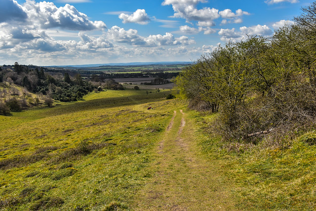 View across Oxfordshire from Shirburn Hill