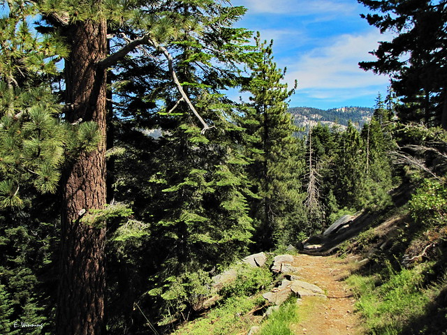 Great Western Divide Trail