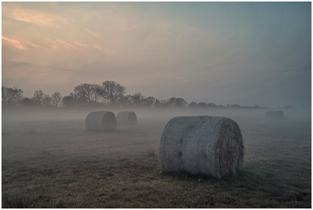 Hay bales in the Mist