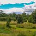 "<p><a href=""https://www.flickr.com/people/jimmy_pierce/"">JimmyPierce</a> posted a photo:</p>  <p><a href=""https://www.flickr.com/photos/jimmy_pierce/51130143728/"" title=""blarney castle and gardens - cork""><img src=""https://live.staticflickr.com/65535/51130143728_83012159e6_m.jpg"" width=""240"" height=""137"" alt=""blarney castle and gardens - cork"" /></a></p>"
