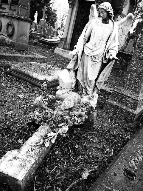 """""""Il n'y a pas de cimetière assez grand pour engloutir le passé."""" (Arvi Kivimaa) """"There is no cemetery big enough to swallow up the past."""""""
