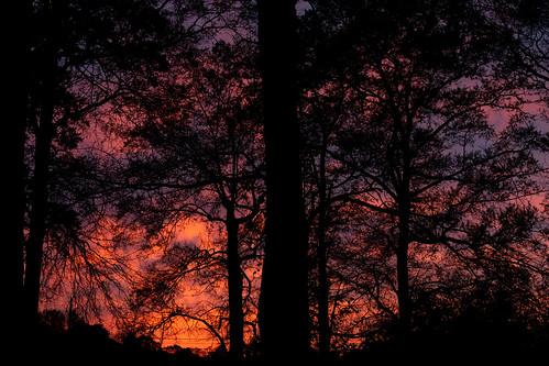 Fiery Evening