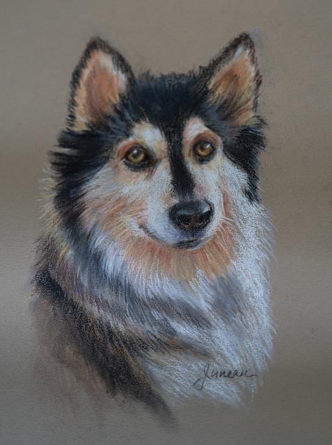 Pastel Portrait of Juneau by Janice Gail