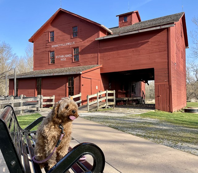 Springtime at Bonneyville Mill (1)