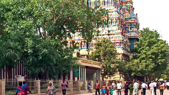 India - Tamil Nadu - Madurai - Meenakshi Amman Temple - 306