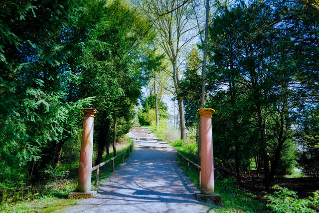 Mystical park ( on Explore April 22, 2021 )