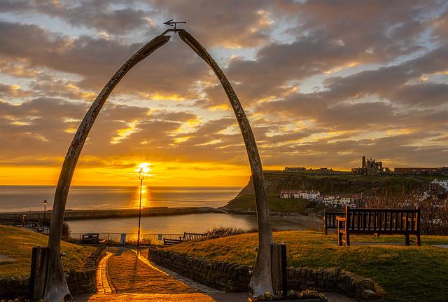 Whale bones sunrise