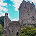 "<p><a href=""https://www.flickr.com/people/jimmy_pierce/"">JimmyPierce</a> posted a photo:</p>  <p><a href=""https://www.flickr.com/photos/jimmy_pierce/51131043575/"" title=""blarney castle and gardens - cork""><img src=""https://live.staticflickr.com/65535/51131043575_7be1420156_m.jpg"" width=""240"" height=""177"" alt=""blarney castle and gardens - cork"" /></a></p>"