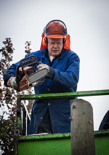 Cutting down a tree - April 2021 (27)