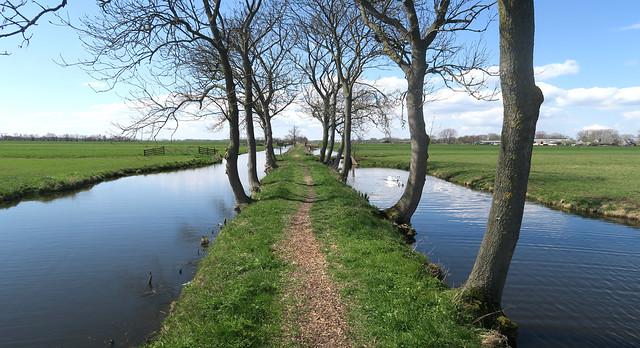 Small Path Walking
