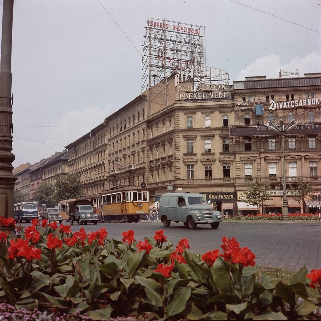 09. Цветочная клумба украшает городскую улицу в Будапеште