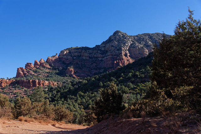 Hiking the Trails of Coconino National Forest