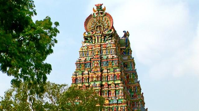India - Tamil Nadu - Madurai - Meenakshi Amman Temple - 305