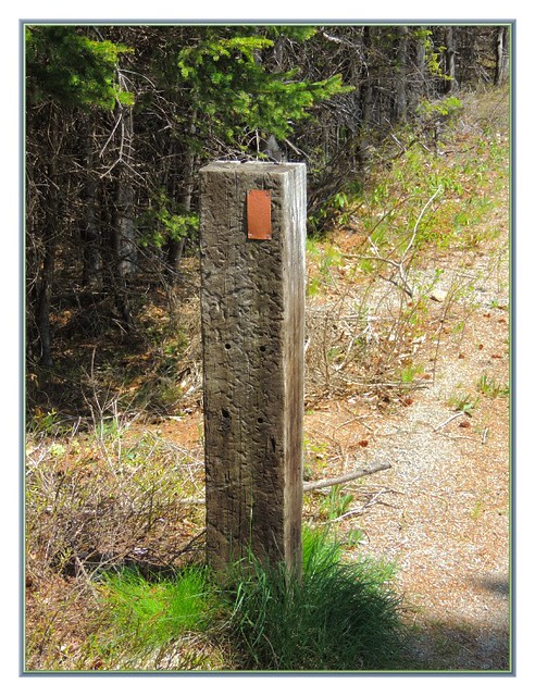 The Signpost
