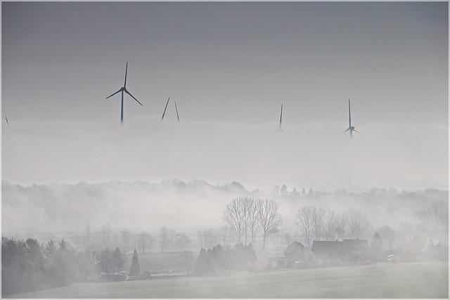 Nebel in der Lausitz
