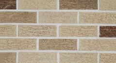Silver Satin Bark Bark Texture gray Brick
