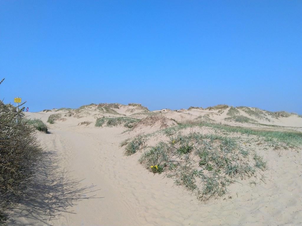 Sand Dunes on Crosby Beach, Liverpool
