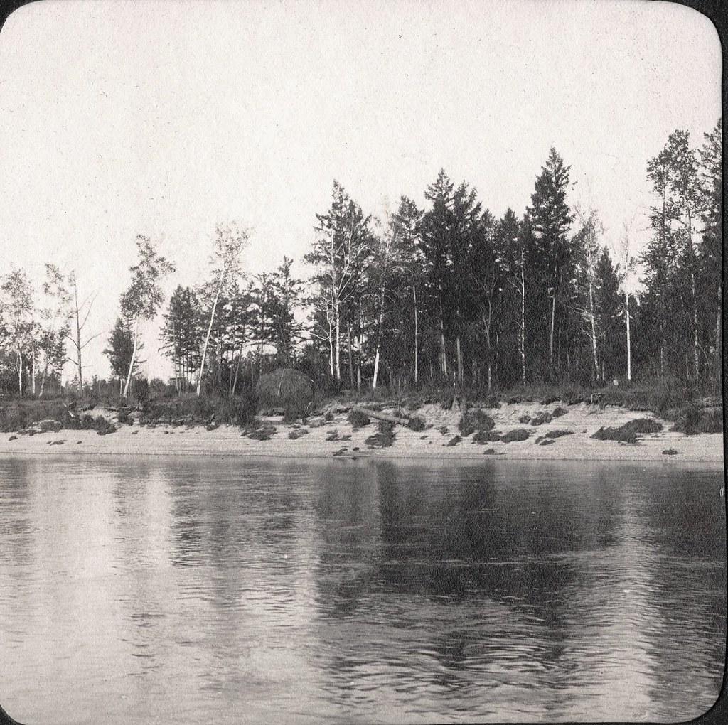 Вид участка левого берега реки Зеи ниже села Дамбуки