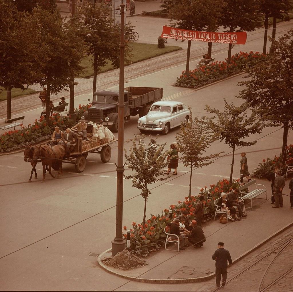 26. Гужевой транспорт на проспекте Красной Армии в Дебрецене