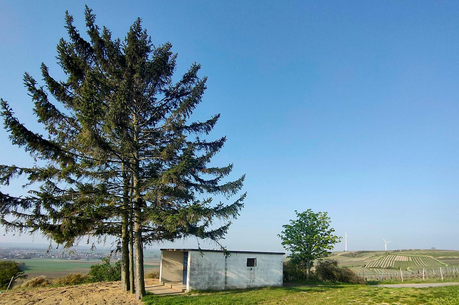 Wingertshäuschen zwischen Zornheim und Mommenheim