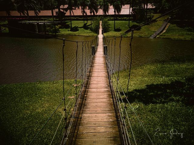 Bridge - 1