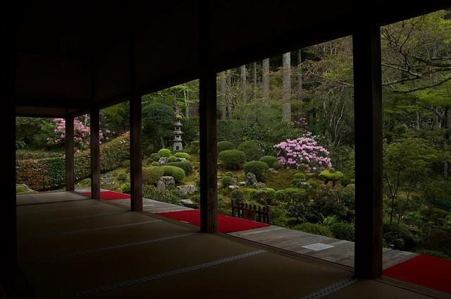 Garden in a frame
