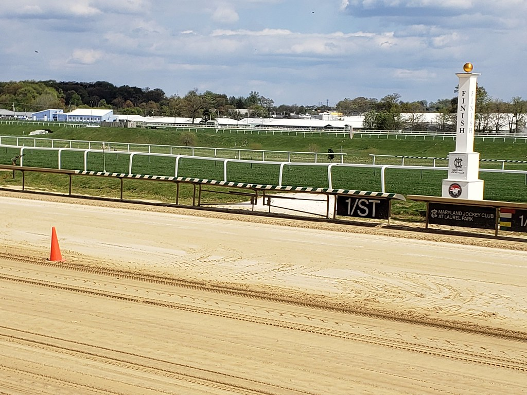 Dogs up at Laurel Park. Photo by The Racing Biz.
