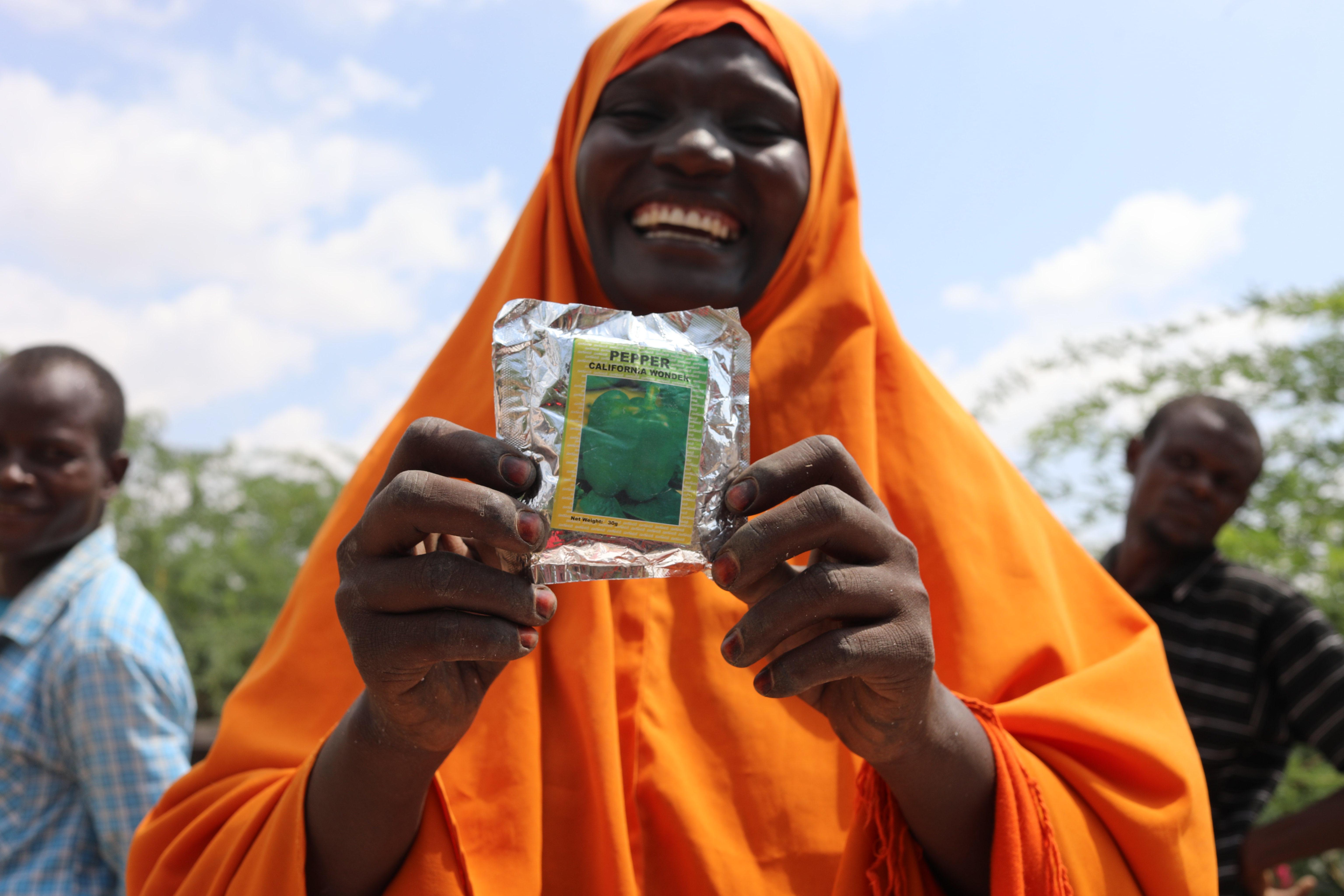 Somalia | Desert locust livelihood support