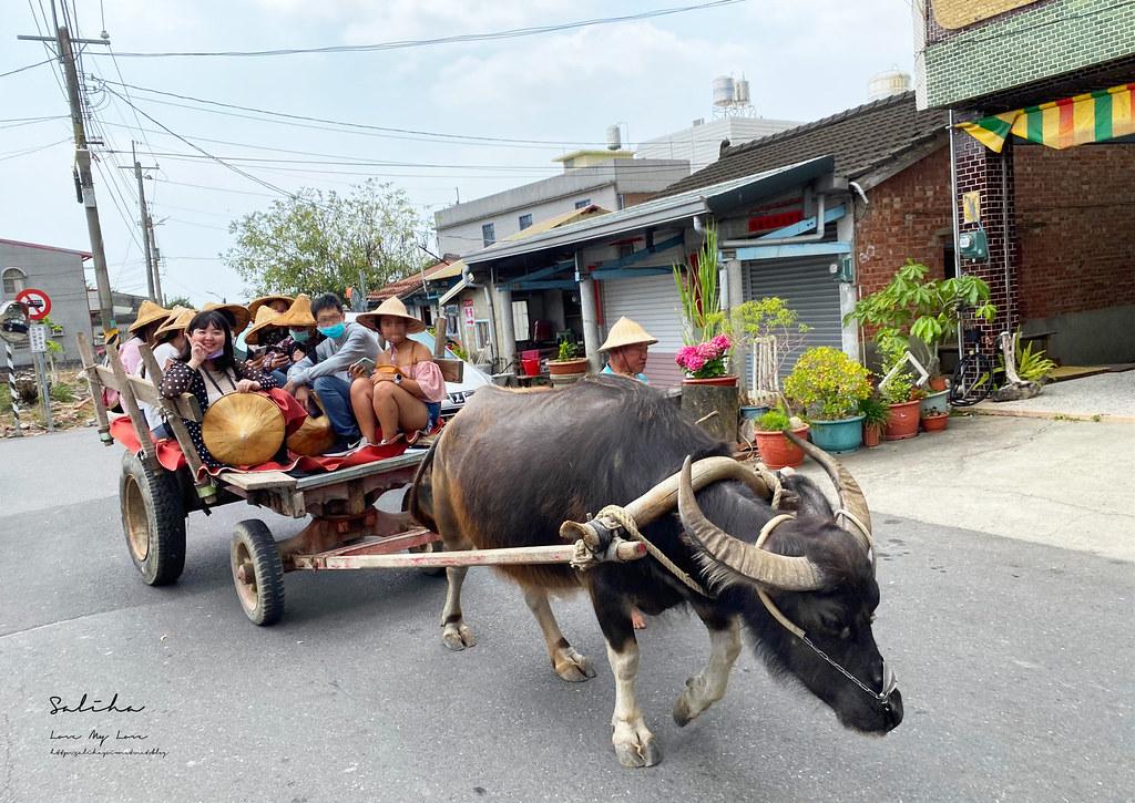 台南後壁一日遊俗女養成記拍攝地點好玩牛車必吃紅茶香蕉冰伴手禮 (1)