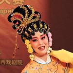 中国—东盟(南宁)粤剧大赛/China-ASEAN (Nanning) Cantonese Opera Competition DSCN9134