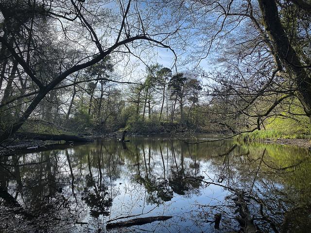 20210423_The lake at Brueton Park in Spring