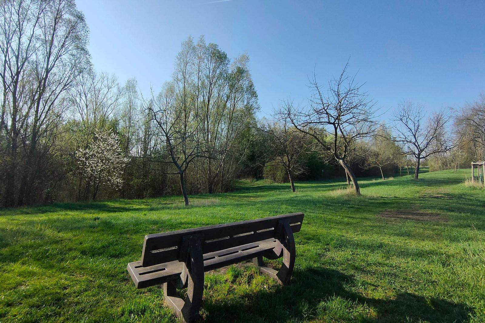 Naturschutzgebiet an der Selz bei Hahnheim (Richtung Köngernheim)