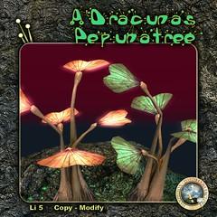 DDDF A'Dracunas Pepunatree